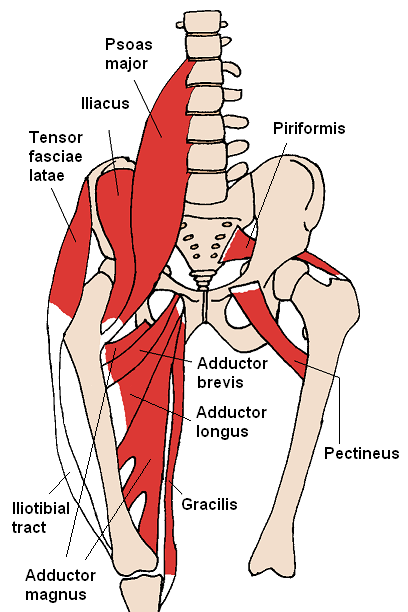 Groin pain 2 – Hip Flexor strains